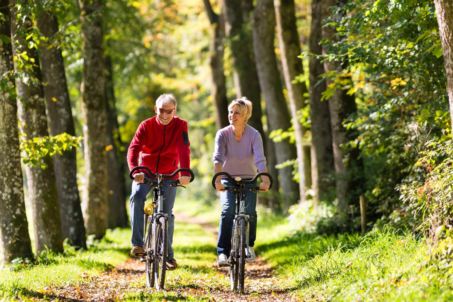 Couple riding bicycles on a forest path